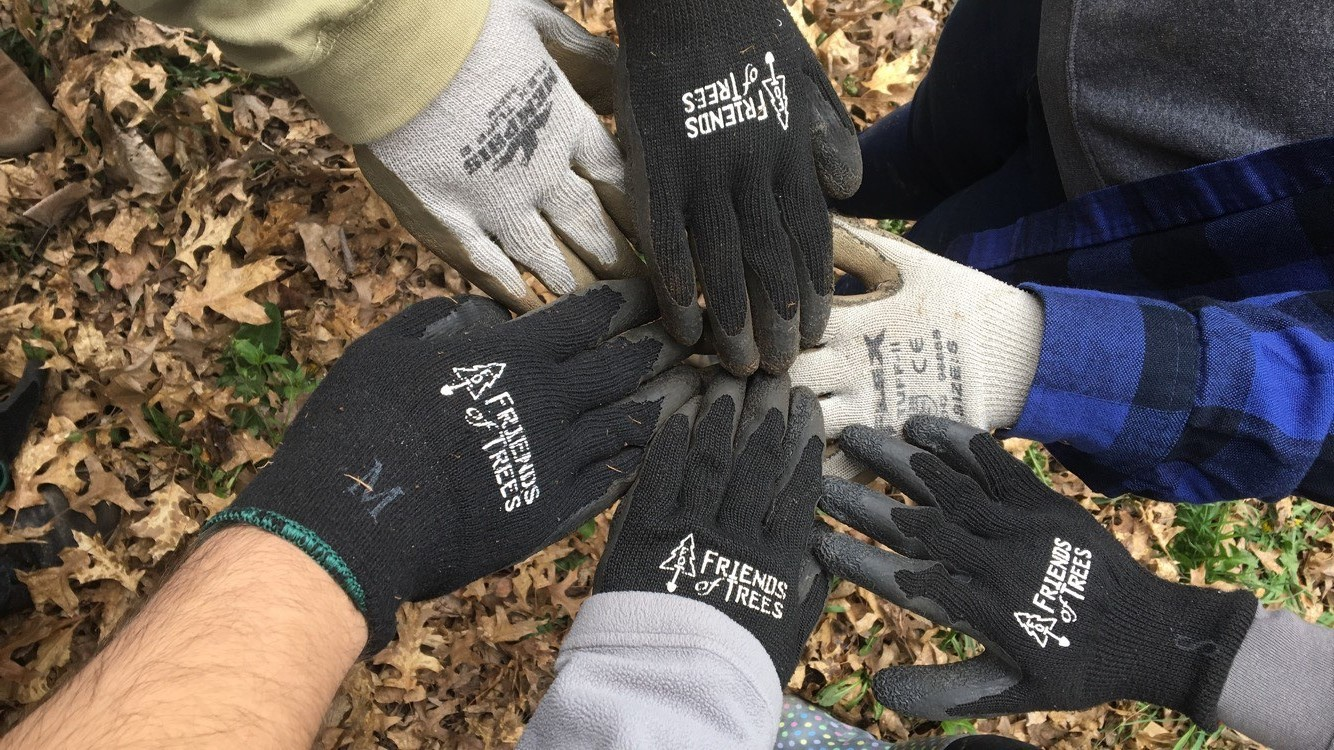 Hands in circle wearing Friends of Trees gloves